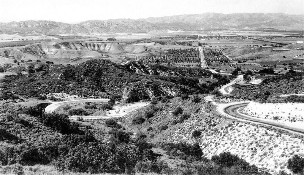 Fig.7-Topanga Summit-trees visible-1920s